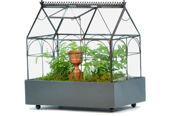 terrarium cage christmas gifts for him