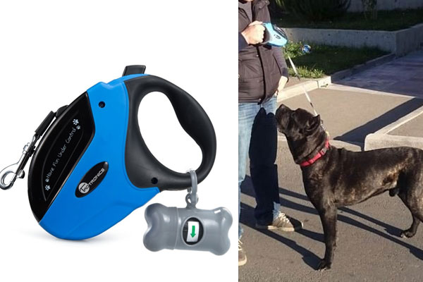 dog leash gifts for dog lover