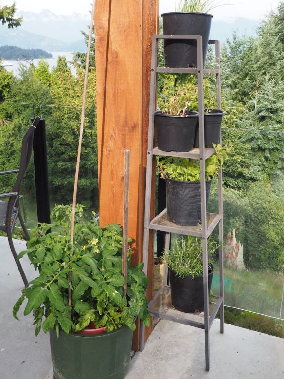 herb tower on deck