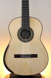 Dominelli Guitar - Top