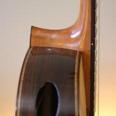 Dominelli Guitar - Raised Fingerboard
