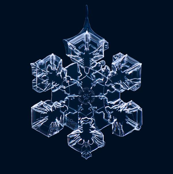 Gorgeous Macro Photographs of Snowflakes by Matthias Lenke snow photography ice