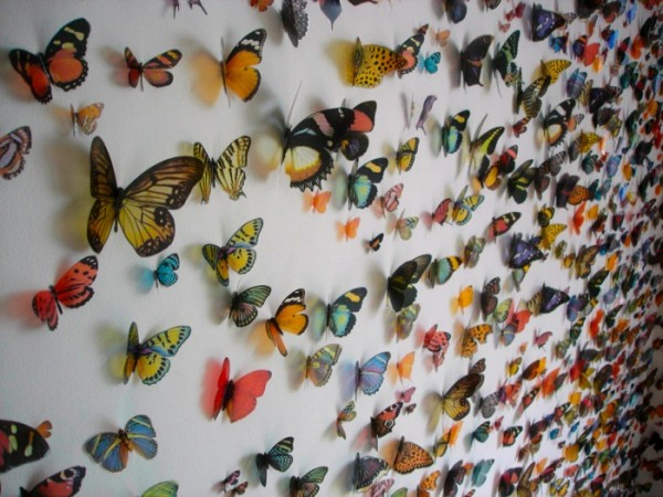 Swarms, Flocks & Herds: Installations by Kristi Malakoff multiples installation insects animals