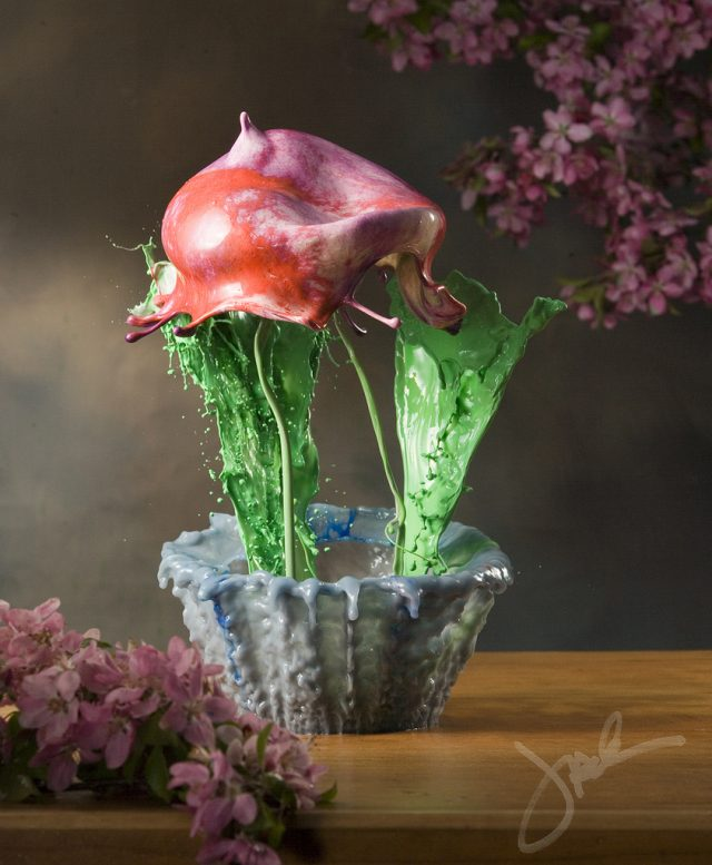 High Speed Liquid Flowers Photographed by Jack Long water flowers