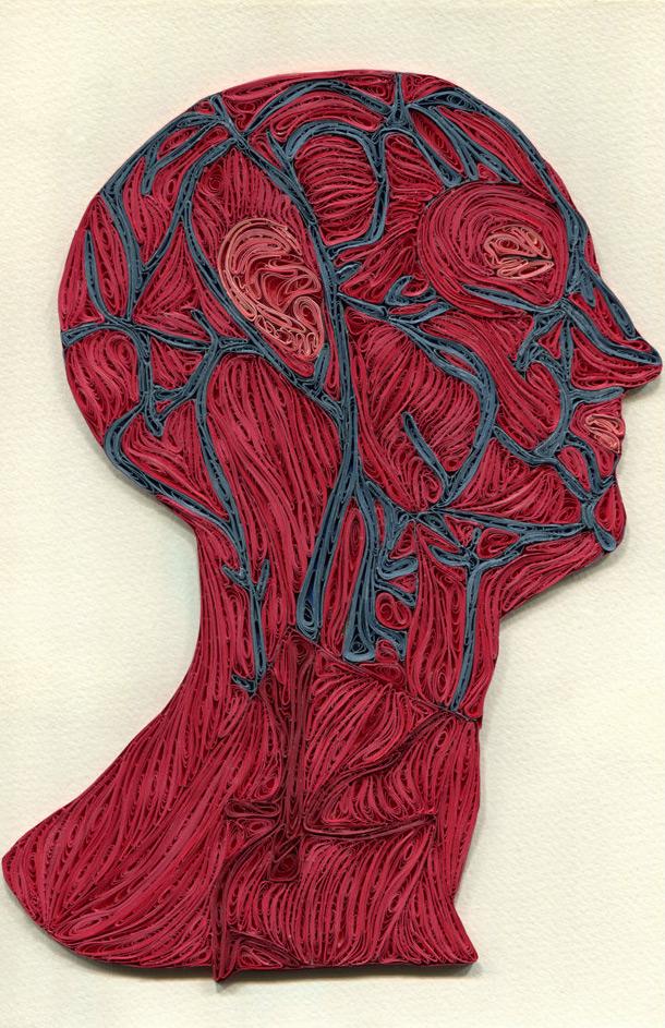 Quilled Paper Anatomy by Sarah Yakawonis quilling paper anatomy
