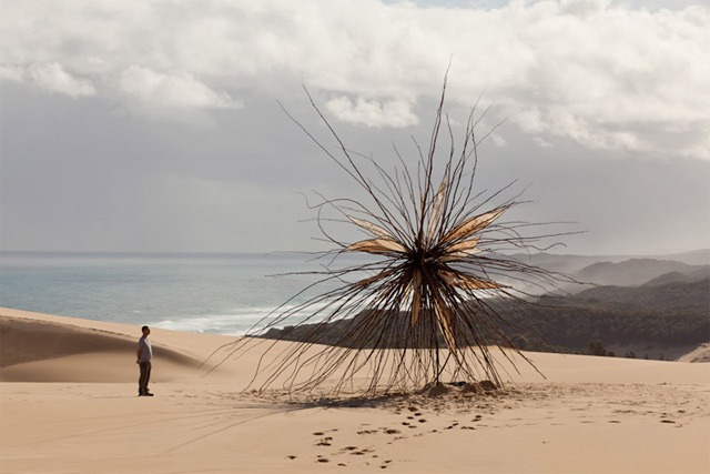 Giant Tree Branch Sculpture Installed at Croajingolong National Park by Corey Thomas  trees sculpture land art Australia