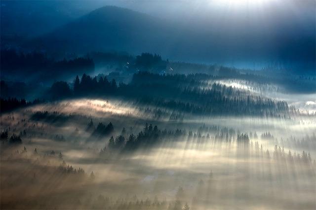 https://i1.wp.com/www.thisiscolossal.com/wp-content/uploads/2012/11/fog-2.jpg