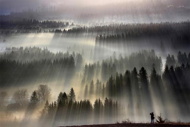 https://i1.wp.com/www.thisiscolossal.com/wp-content/uploads/2012/11/fog-5.jpg