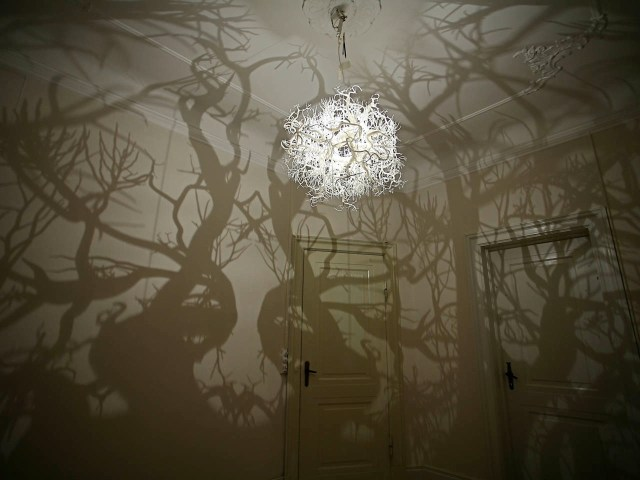 Chandelier Projects Tree Shadows onto the Wall trees shadows lighting