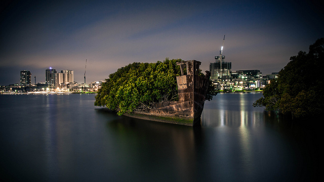 A 102 Year Old Transport Ship Sprouts a Floating Forest trees nature history boats Australia