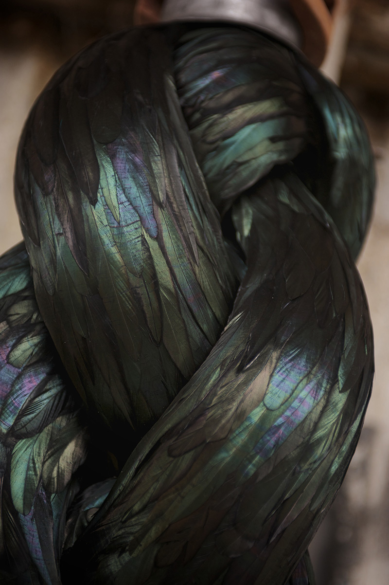 New Feather Sculptures by Kate MccGwire sculpture multiples feathers birds