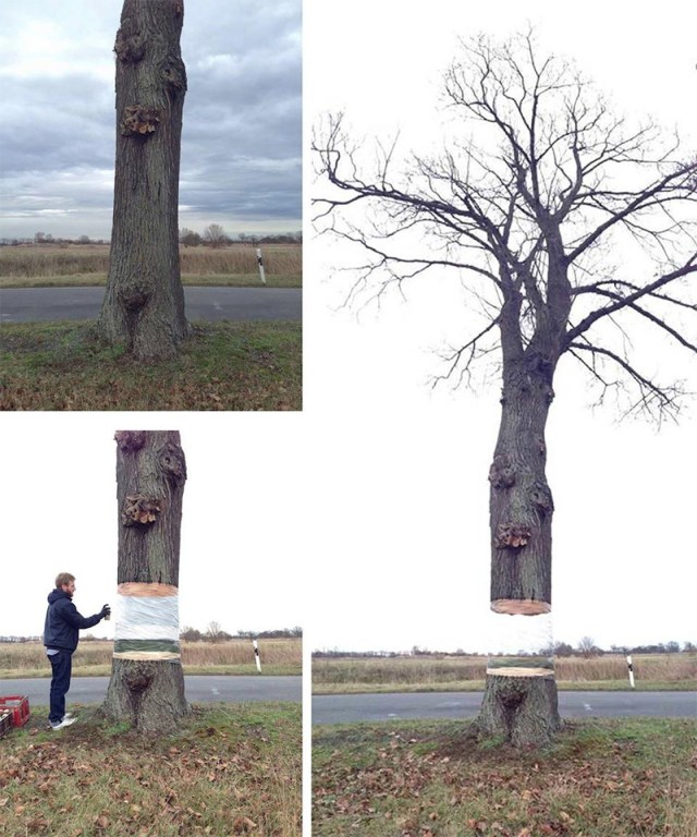 Hovering Tree Illusion by Daniel Siering and Mario Shu in Potsdam, Germany trees street art illusion
