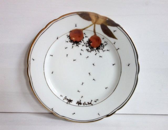 Porcelain by Evelyn Bracklow