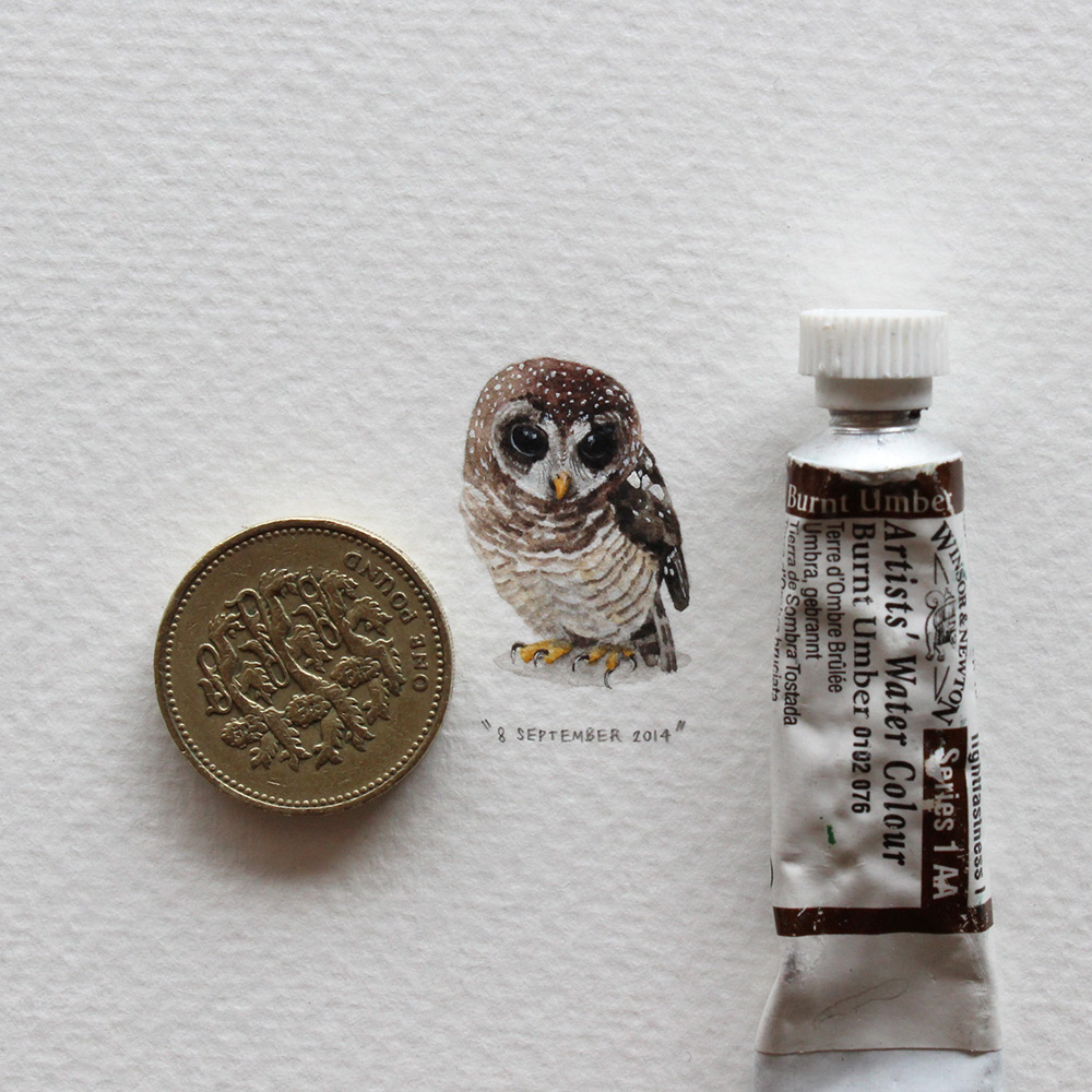 Postcards for Ants: A 365 Day Miniature Painting Project by Lorraine Loots painting miniature