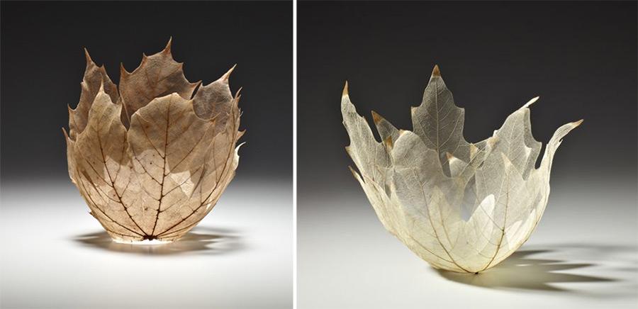 leaf-6