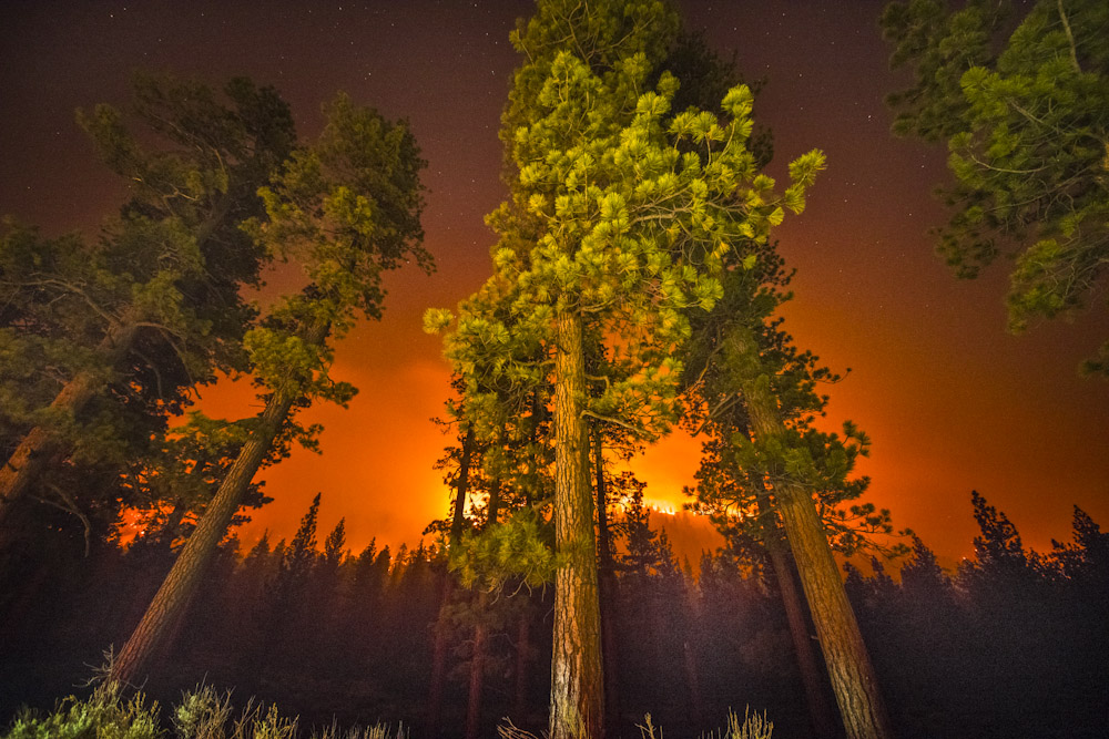 The Lake Fire burns in the San Bernardino National Forest Friday June 19, 2015. By evening the fire burned over 13,000 acres and was 10% contained.