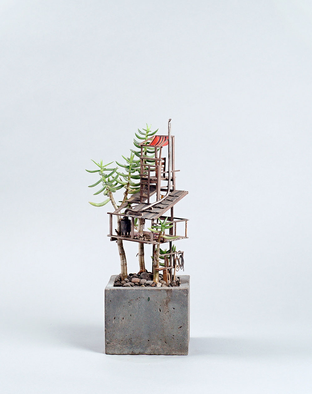 Miniature Sculptures Plant Decor on Succulent in Square Concrete Pot Jedediah Voltz