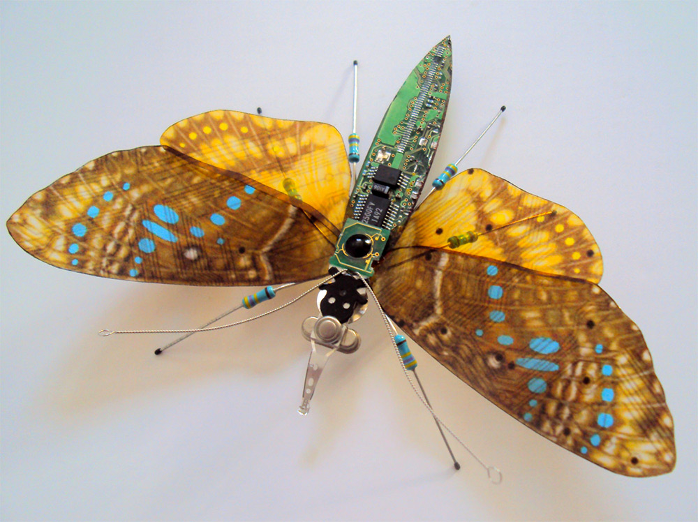 bug-10