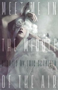 """Cover of """"Meet Me in the Middle of the Air,"""" by Eric Schaller. For Alex Good review"""