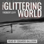 The glittering world - cover