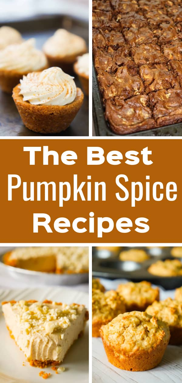 Pumpkin Spice Recipes perfect for fall. Pumpkin Spice Blondies, Pumpkin Spice Sugar Cookies, Gluten Free Pumpkin Spice Cookie Bars, Pumpkin Spice Muffins and Pumpkin Spice Cheesecake.