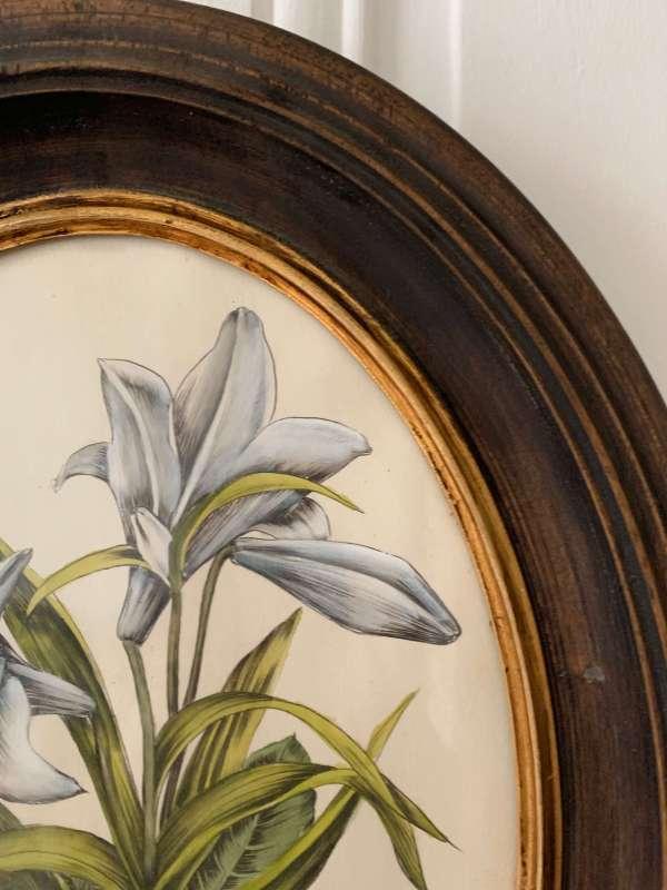 ancienne gravure fleur de lys