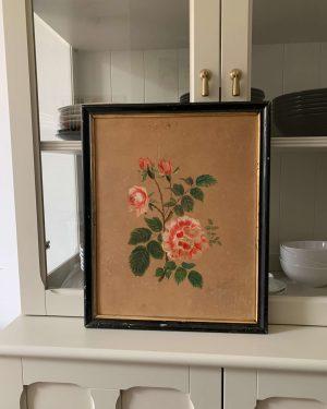 ancienne peinture de roses fin xixème