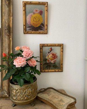 anciennes peintures de fleurs debut xxème