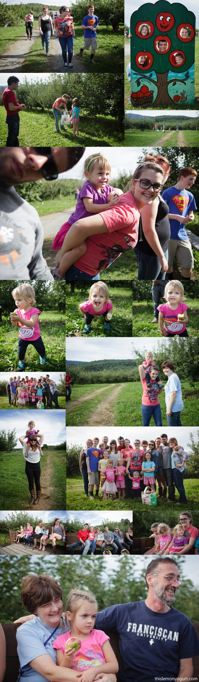 apple_picking-01
