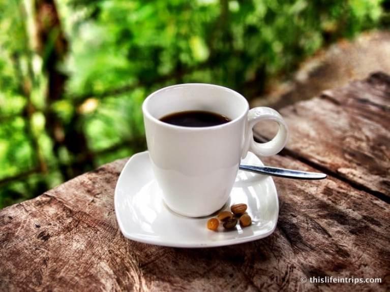 نتيجة بحث الصور عن coffee bali
