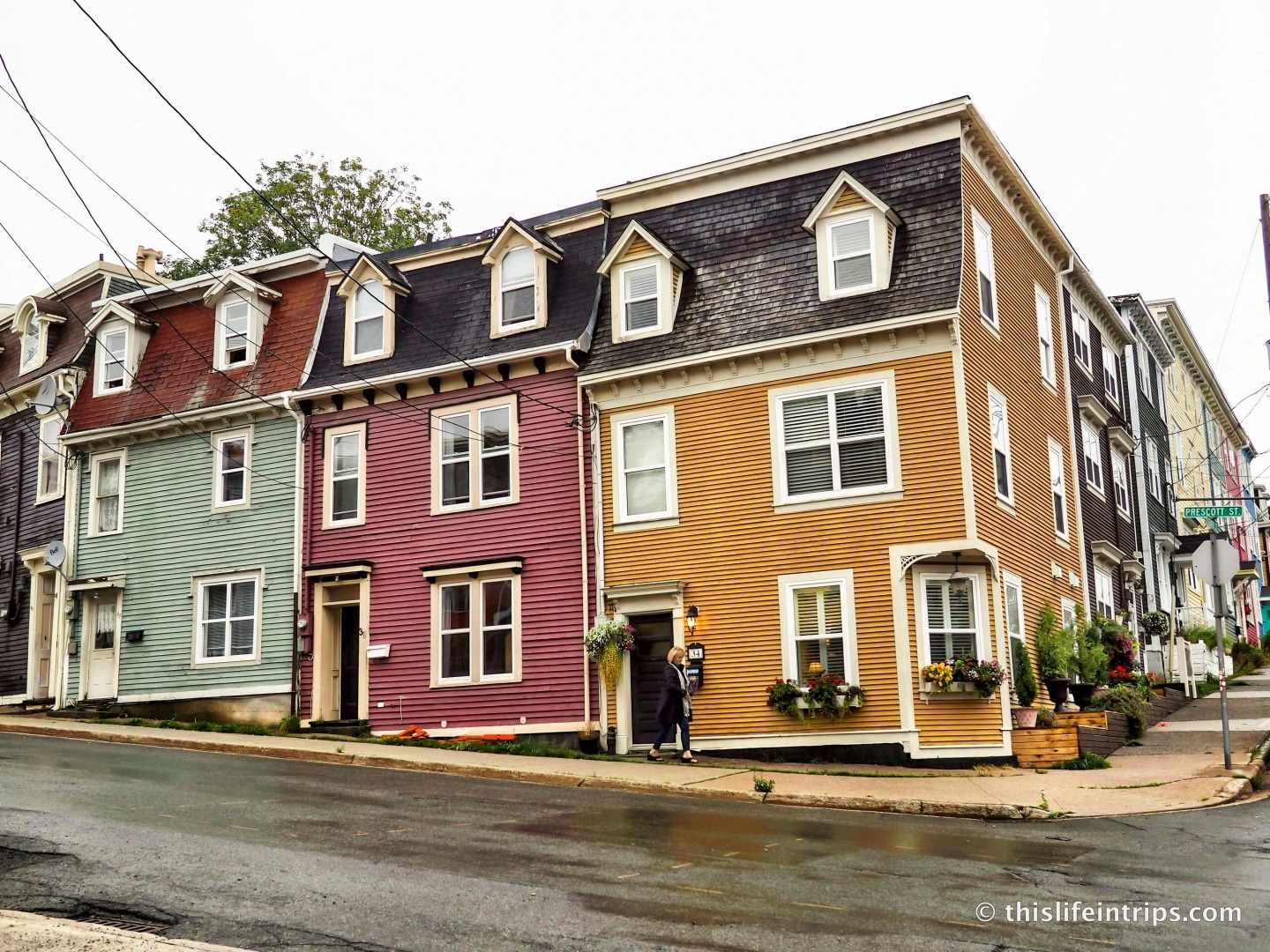 What To Do In St Johns Newfoundland When The Fog Rolls