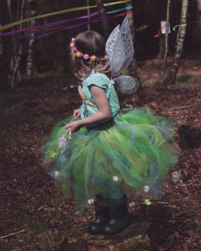 fairy woodland party