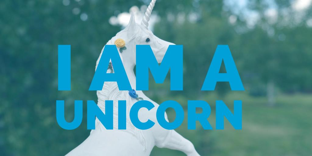 Homeschool Dad = Unicorn