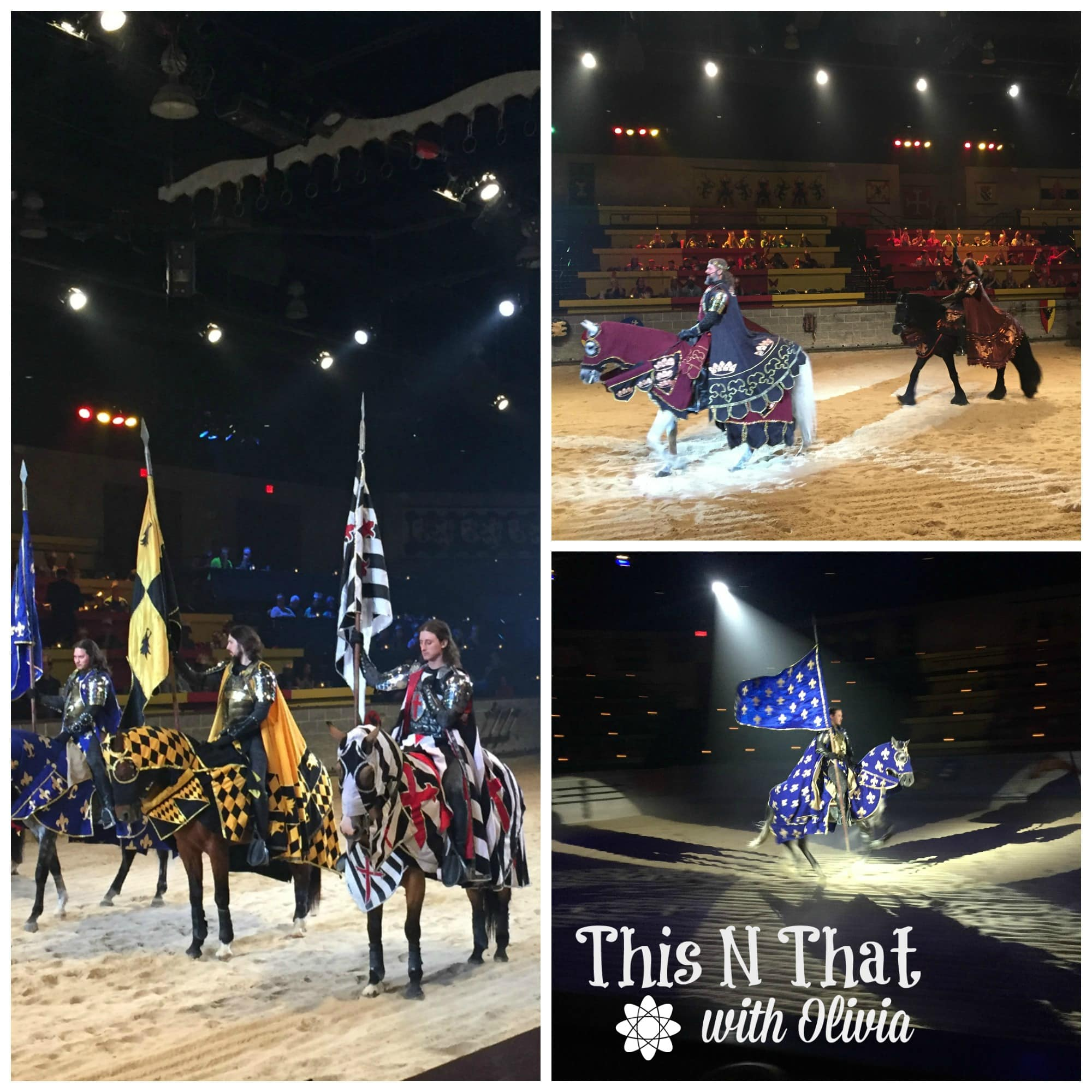 Medieval Times MD Experience   ThisNThatwithOlivia.com