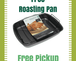 FREE Roasting Pan (after cashback)! #Thanksgiving #Free