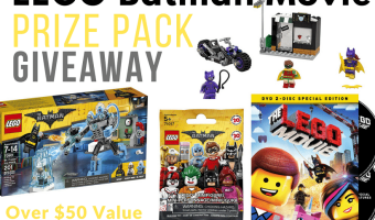 Lego Batman Movie Prize Pack Giveaway! #LegoBatmanMovie #TheHoppingBloggers