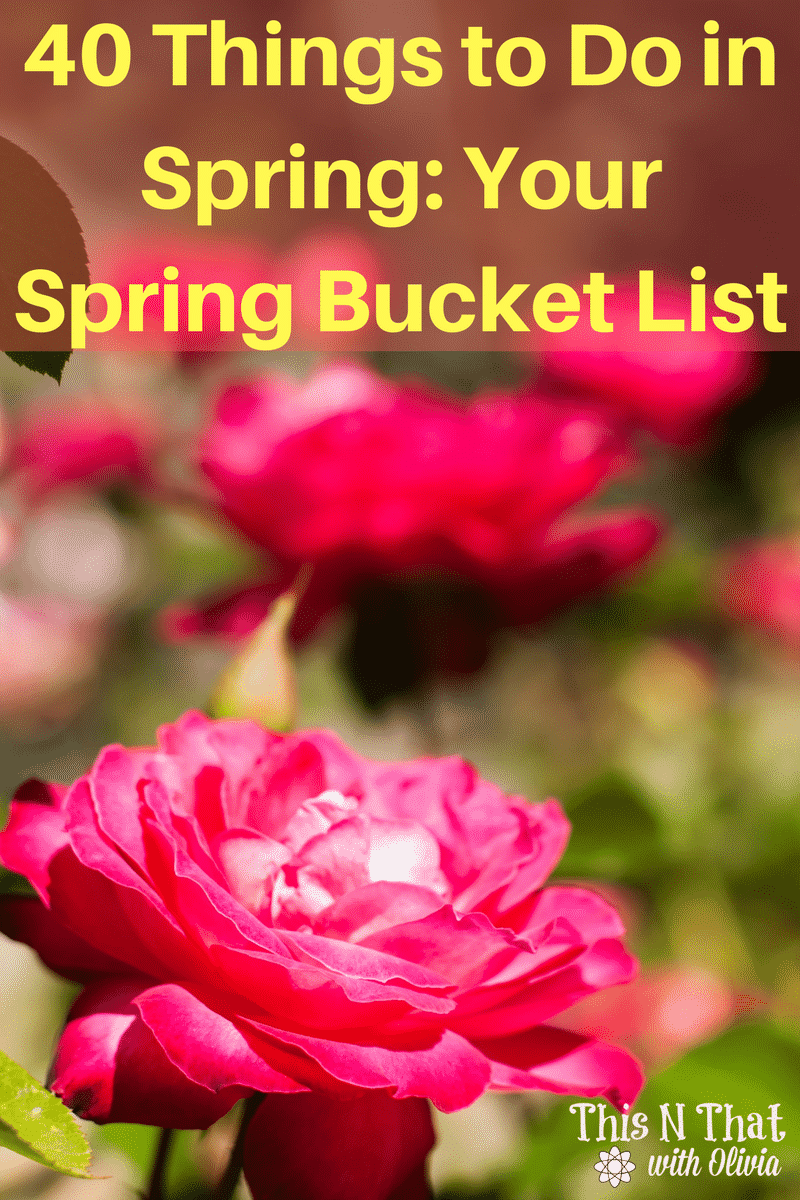 40 Things to Do in Spring: Your Spring Bucket List