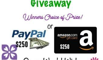 $250 Amazon/PayPal Spring Into Fun Giveaway! #SpringIntoFun Ends 4/8