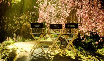 Production Underway on MALEFICENT II with Angelina Jolie and Elle Fanning Reprising Their Roles!!! #Maleficent2