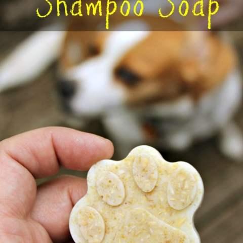 DIY Dog Essential Oil Oatmeal Anti-Itch and Flea/Tick Repellent Shampoo Soap Bars