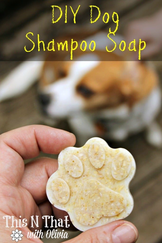 DIY Essential Oil Oatmeal Anti-Itch and Flea/Tick Repellent Dog Shampoo Soap Bars