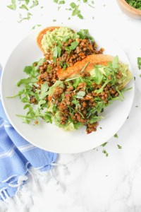 This Chipotle Lentil Avocado Toast is the ultimate vegan brunch meal - sourdough bread topped with avocado, greens and warm chipotle lentils | ThisSavoryVegan.com #thissavoryvegan #vegan #veganbrunch