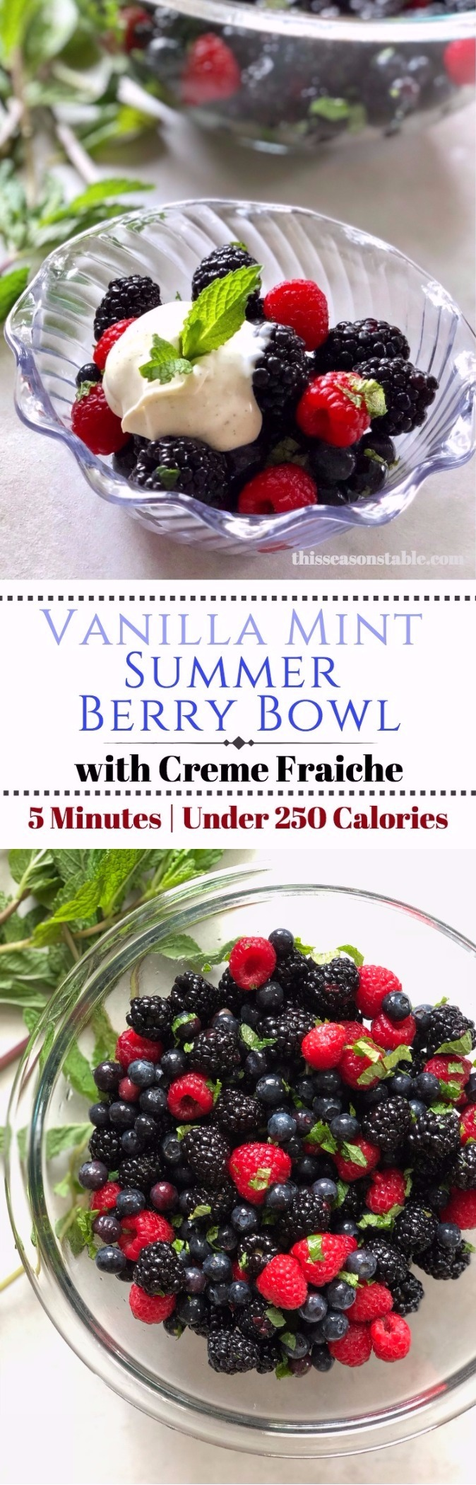 The perfect blend of summer berries coated in a light vanilla mint topping. Full of nutrients and flavor! Makes the perfect gift for new moms too!