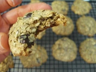 15 Yummy Lactation Cookie Recipes for Breastfeeding Moms (Part 1)