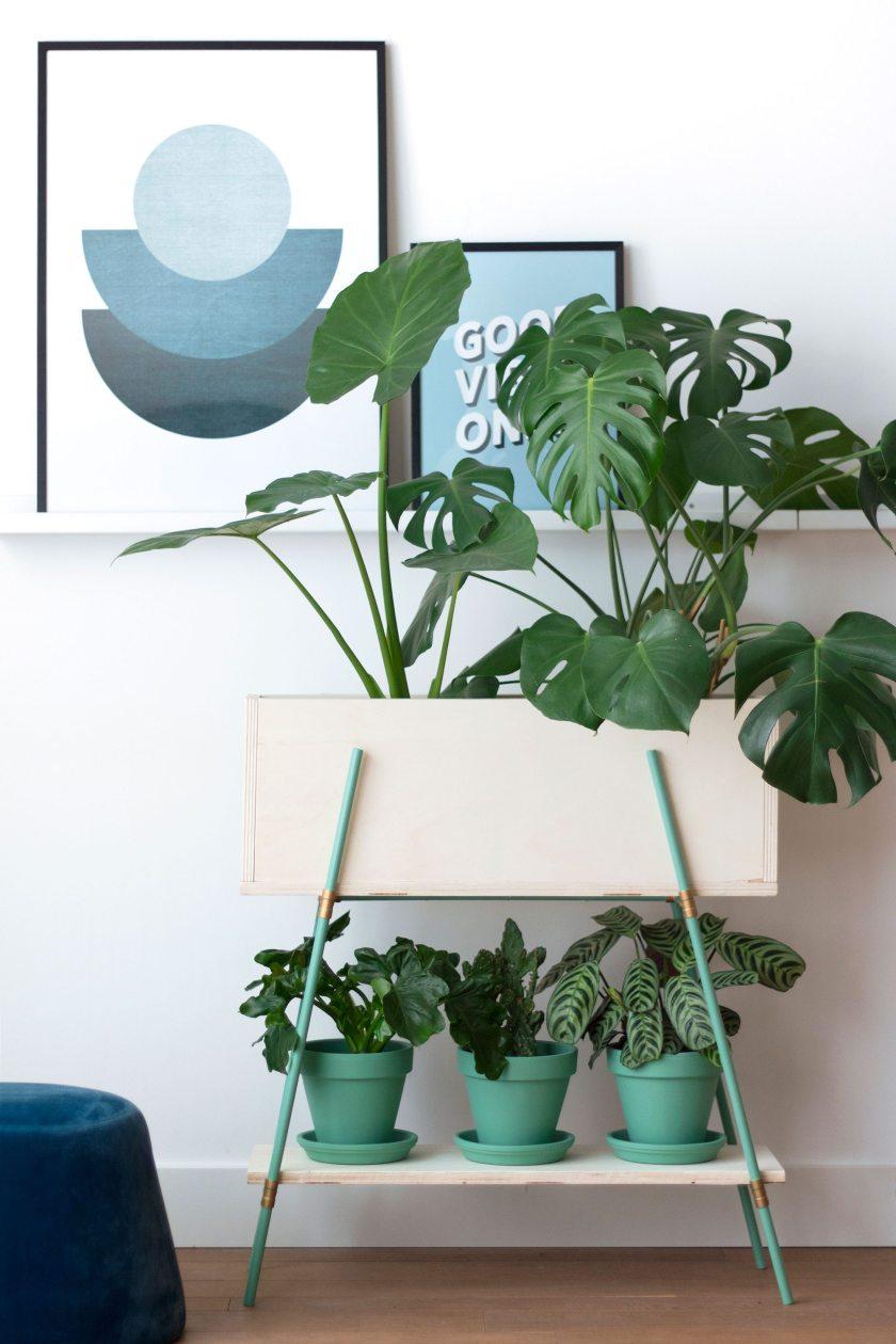 DIY Plant Stand Tutorial