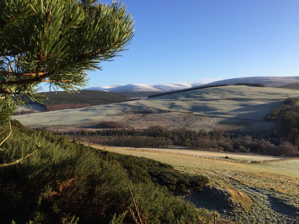 Views from behind our B&B in Glenlivet