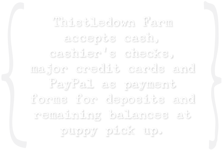 Thistledown Farm accepts cash, cashier's checks, major credit cards and PayPal as payment forms for deposits and remaining balances at puppy pick up.