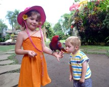 Image from a holiday in Ubud, Bali, Indonesia. July 2012.