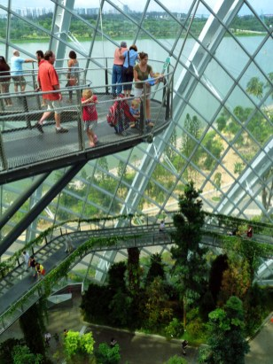 Coming down the Cloud Forest at Gardens by the Bay. From the Wood's trip to Singapore in 2014