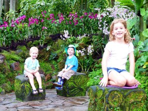 At the Botanic Gardens Orchid Garden. From the Wood's trip to Singapore in 2014